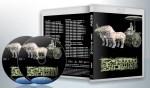 蓝光纪录片 25G 13695 《纪录片:考古中国》 2碟